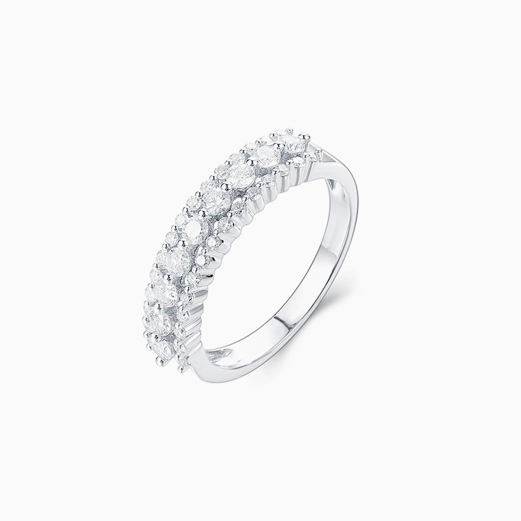 Two Claw set Diamond Band